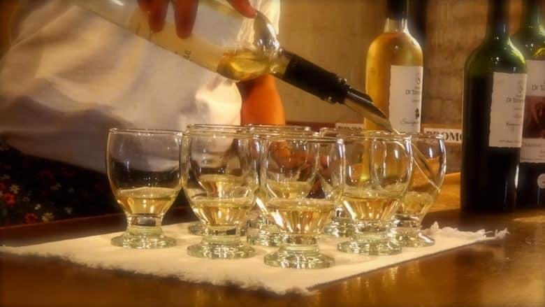 Touring Mendoza's Many Vineyards